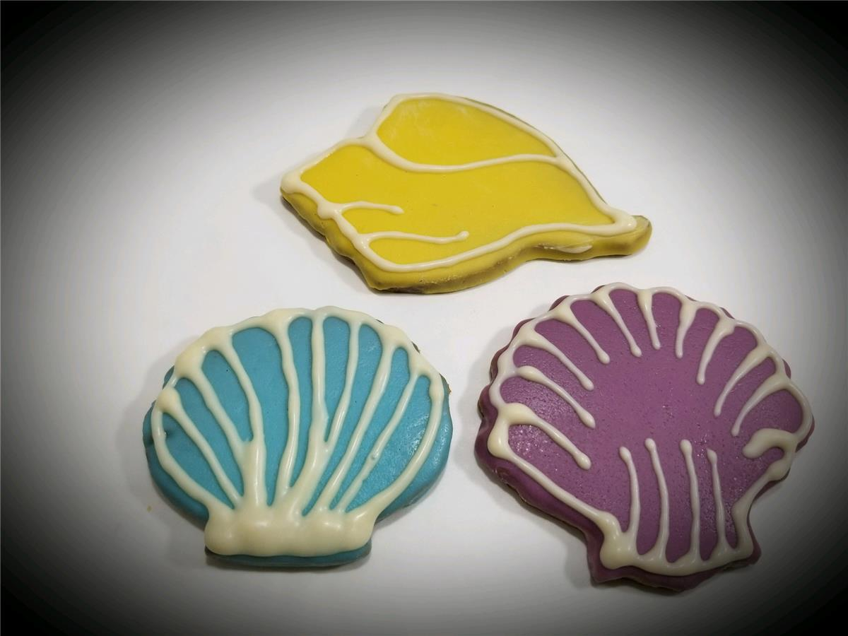 Seashells - Tray of 12